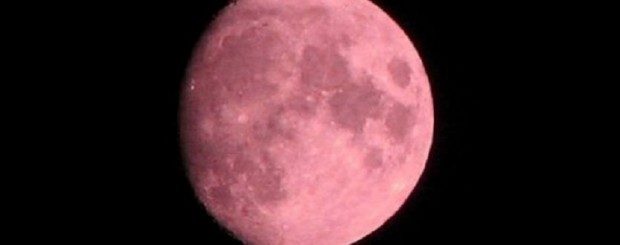 Luna color fragola